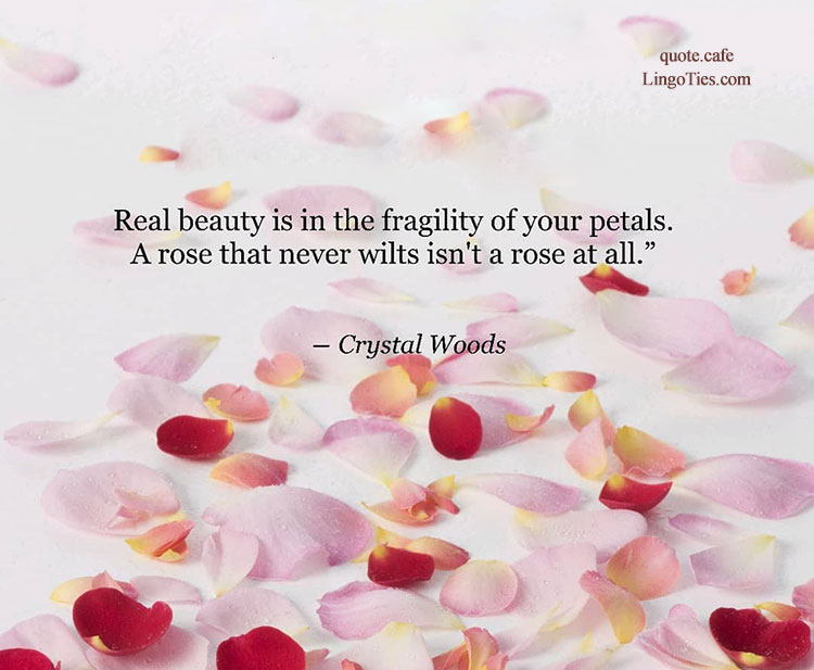 Real beauty is in the fragility of your petals. A rose that never wilts isn't a rose at all.
