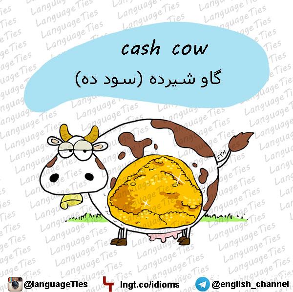 cash cow - گاو شیرده