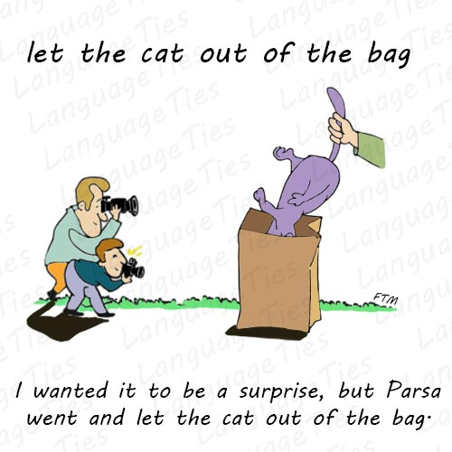Meaning Image And Example Of Let The Cat Out Of The Bag