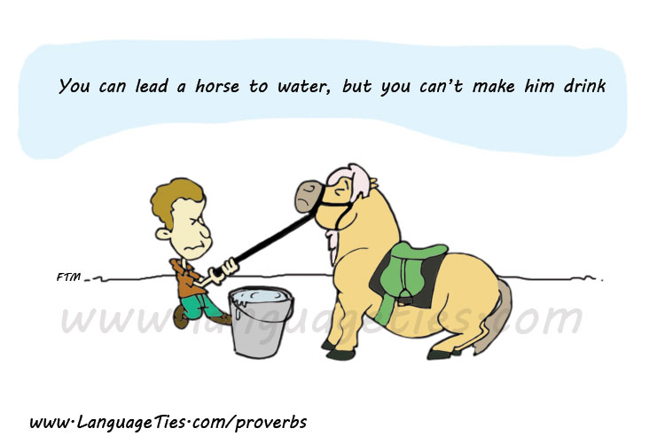 You Can Lead A Horse To Water, But You Can't Make Him