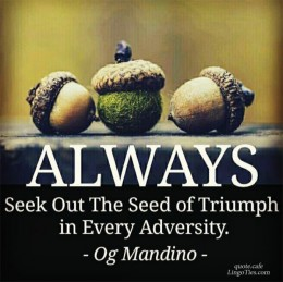 Always seek out the seeds of triumph in every adversity.